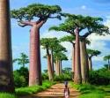 """Южна Африка, Ботсвана, Зимбабве с Водопада 'Виктория"""" и сафари в национален парк Крюгер! Рев на диви  животни и грохот на водопади! Потвърдена програма!"""