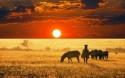 ЮАР – ЗИМБАБВЕ с водопадът Виктория! Рев на диви  животни и грохот на водопади!