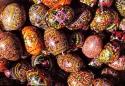 ГЪРЦИЯ - Великден на Йонийското крайбрежие! Ранни записвания до 28.02.!